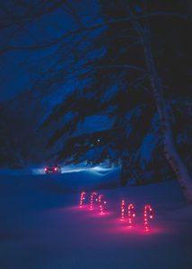 Julefred kommer med de rigtige sange